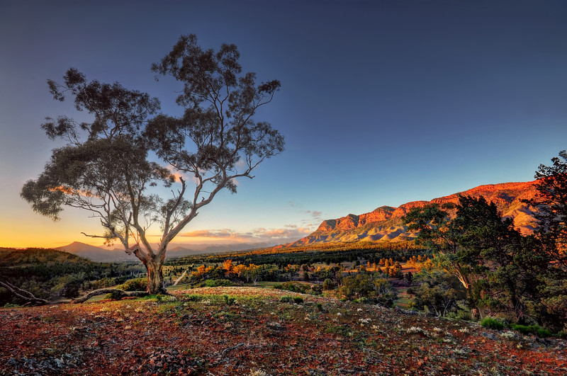 The Heysen Range at Sunrise