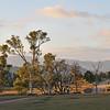 Bush Road at Aroona