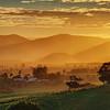 Atherton Sunset