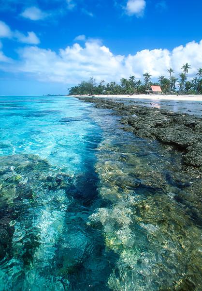 Tropical Beach in Polynesia