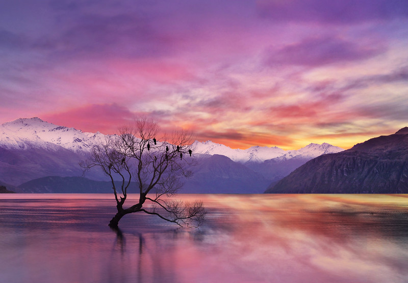 Pink Sky at Lake Wanaka