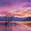 Pink Sky at Lake Wanaka