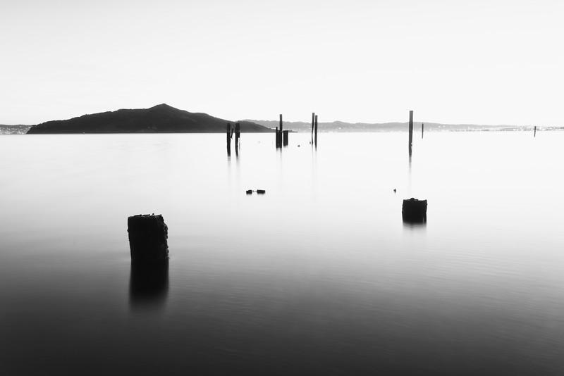 Old pilings, San Francisco Bay