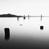 Old pilings, San Francisco Bay
