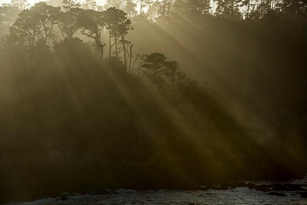 Sunbeams over Bluefish cove, Point Lobos