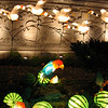 The botanical garden had all these Japanese lanterns on display in all kinds of shapes and sizes.
