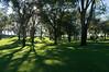 Roosevelt Park, Albuquerque, NM