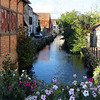 Here is a little canal in the town of Chablis that caught my eye.