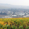 Our Saturday morning started high above the village of Chablis in the vineyards. It was foggy, windy and cold. But the gold of the valley was stunningly beautiful.