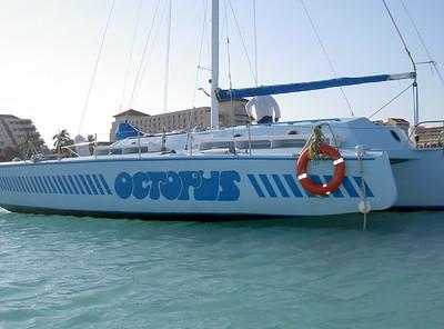 Octupus Aruba