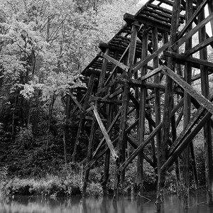 Historic railroad trestle at Whatcom Falls Park. Bellingham,. WA