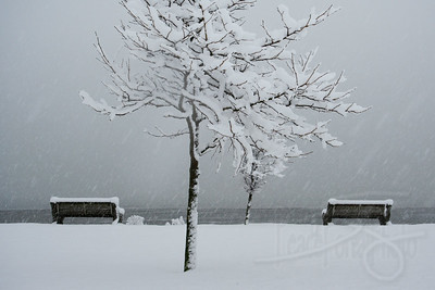 Winter seascape. Marine Park, Blaine, WA. (US Canada Border at Peace Arch)