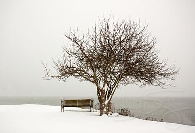 winter seascape, looking for crazy canucks. marine park, blaine, wa (US/Canada border)