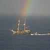Pirate Rainbow