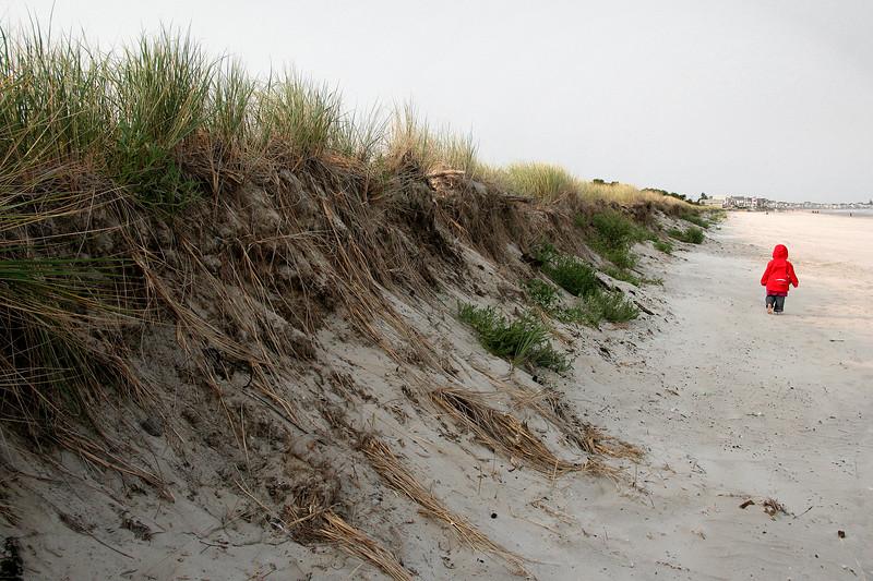 ogunquit, dunes