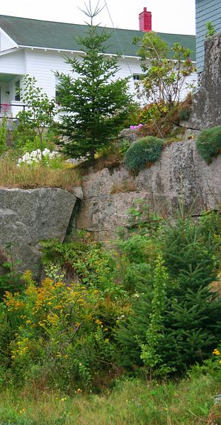 stonington, gallery garden