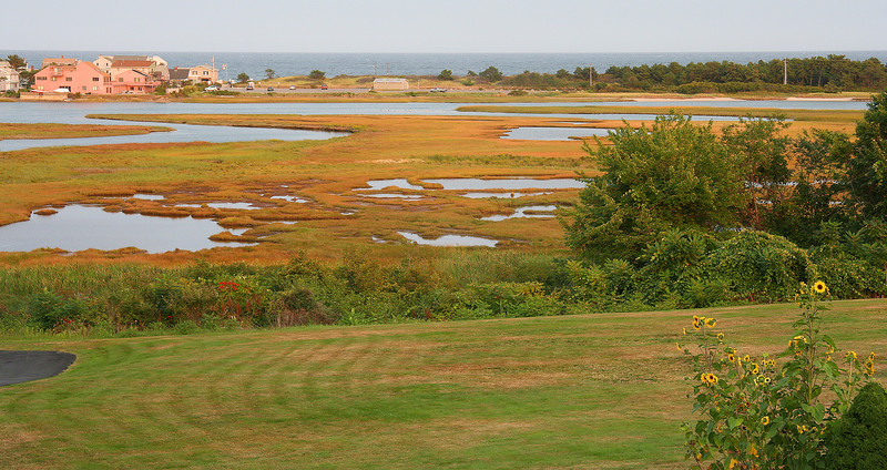 ogunquit, marshes, from hotel