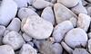 Lake Erie pebbles at Marblehead Light, Ohio