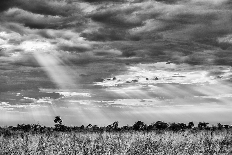 Sun beams over the savannah, Okavango Delta, Botswana.