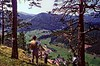 Overlooking the Hohlental, Austria 1968