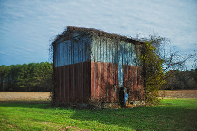 Old Warehouse in  a Field