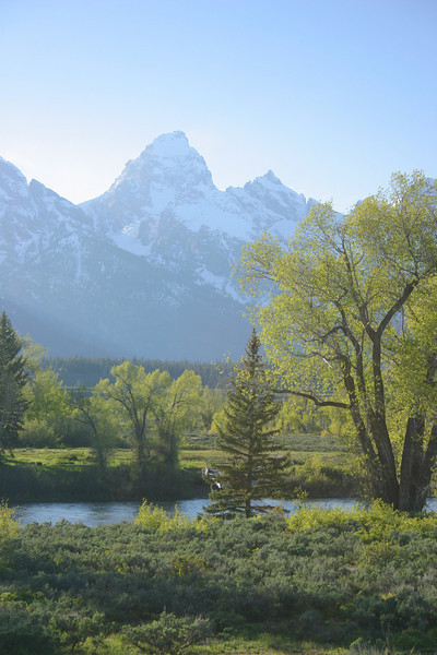 Grand Teton view from Dornan's