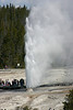 Bee Hive geyser