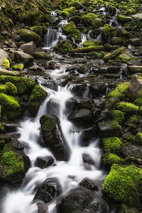 A small, unnamed waterfall along the trail to Sol Duc Falls in Olympic National Park.