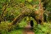 Karishma stands under an arch in the Hall of Mosses