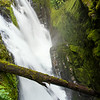 Marymere Falls, Olympic National Park, WA