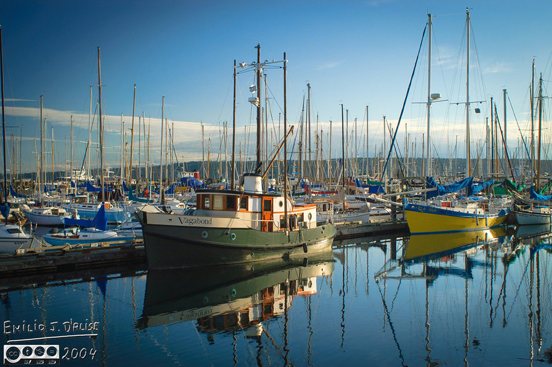 These are probably some of the best marina photos I've ever taken . . . most likely because of the light (near sunset).