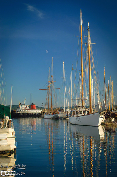 Love the notion of sailing around the world . . . don't have the skill to do it.