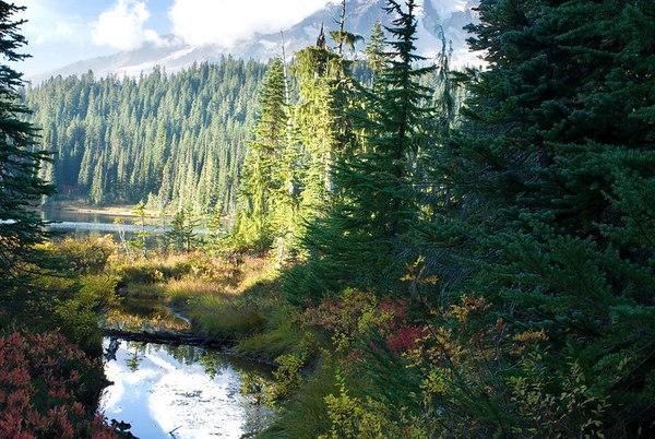 Reflection Lake, Mount Ranier