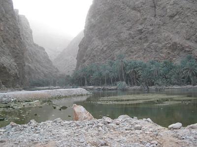 In Wadi Tiwi.