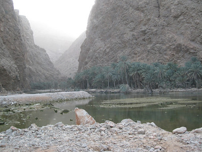 In Wadi Tiwi.