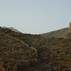 Old field walls, Wadi Ghul