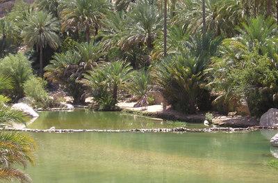 Wadi Bank Khalid