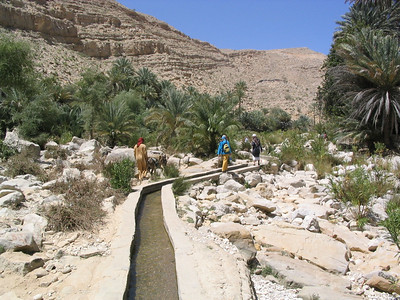 Walking up the falaj to the wadi.