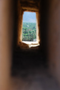 "Date palms, photo taken through one of the gun placements in the walls at Nakhal. The photo is an idea that ""sort of"" worked."