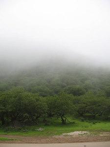 Wadi Dharbat