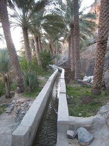 Mizfat - looking along the falaj (irrigation system)