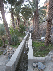 Mizfat - looking along the falaj (irrigation system)