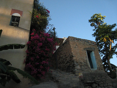 Looking up to one of the houses with a beautiful bourganvillea in the foreground.