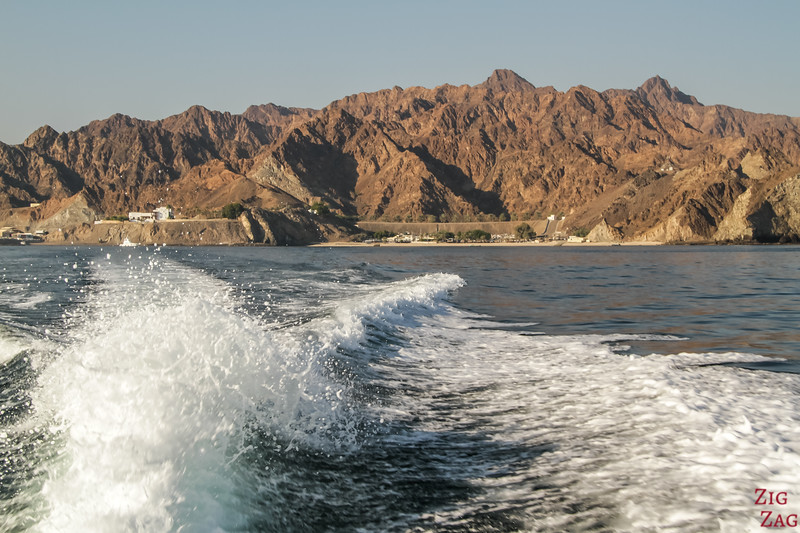 Dolphin watch cruise from Muscat, Oman
