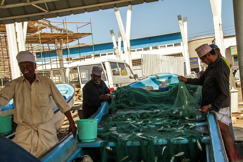 removing fish from net at Muttrah Fish market, Muscat 2