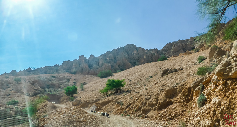 Driving on the Salmah Plateau - Oman landscapes 3