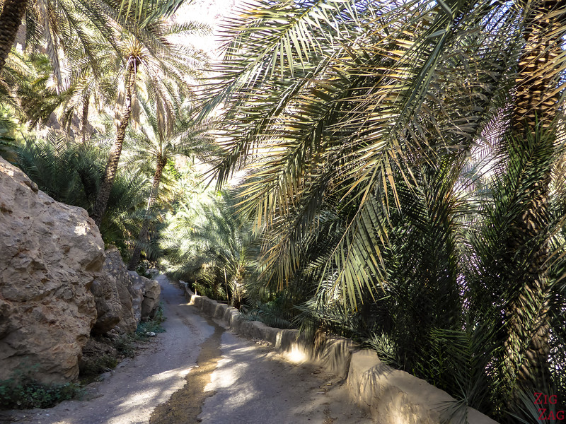 Driving in Wadi Tiwi - Oman 7
