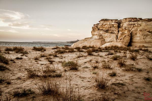 Der Ras Al Jinz Strand 4