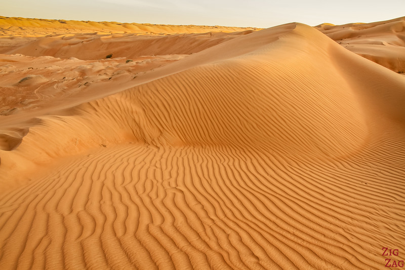 Dunes at Sunset - Wahiba Sands - Oman 4
