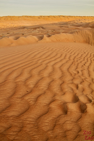Dunes at Sunset - Wahiba Sands - Oman 3